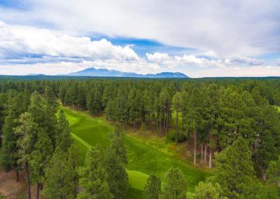 Forest Highlands Aerial 1