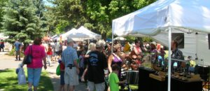 People milling about and checking out local vendors at Flagstaff's Art in the Park festival.